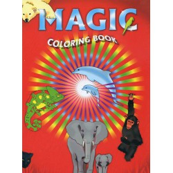 Big Magic Coloring Picture Book