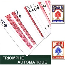 Le Triomphe Automatique en Bicycle