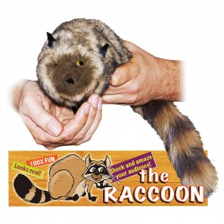 Robbie the Magic Trick Raccoon - Spring Animal - Includes Instructional DVD